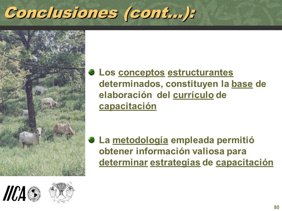 Conclusiones (cont…):