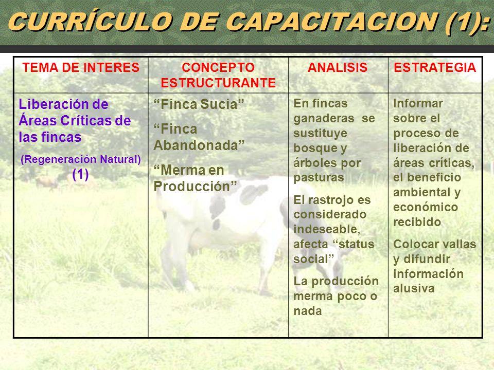 CURRÍCULO DE CAPACITACION (1):