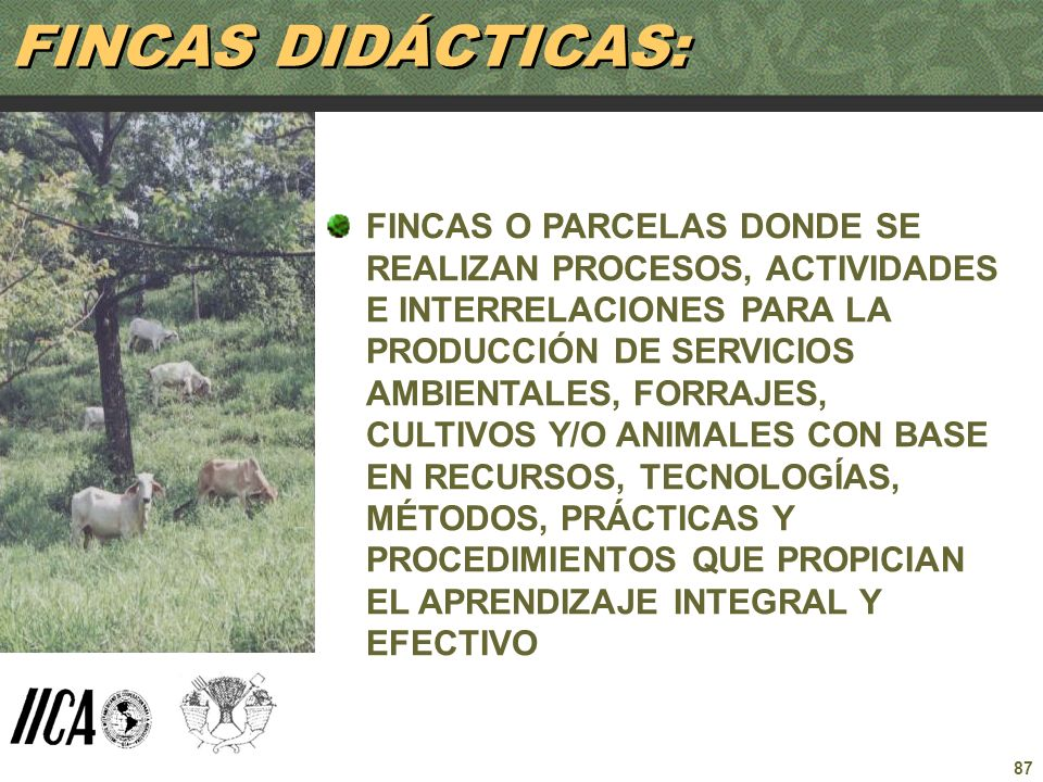 FINCAS DIDÁCTICAS: