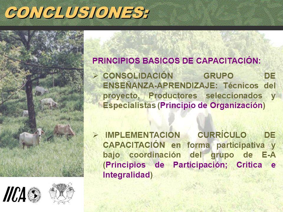 CONCLUSIONES: PRINCIPIOS BASICOS DE CAPACITACIÓN: