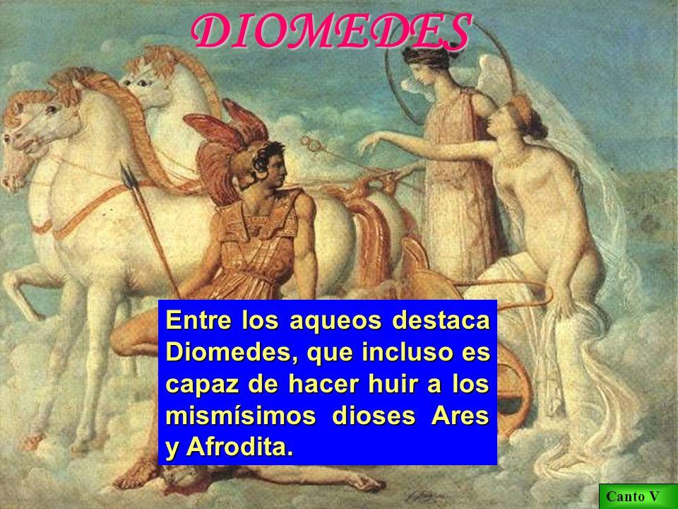 DIOMEDES Entre los aqueos destaca Diomedes, que incluso es capaz de hacer huir a los mismísimos dioses Ares y Afrodita.