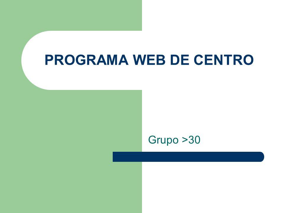 PROGRAMA WEB DE CENTRO Grupo >30