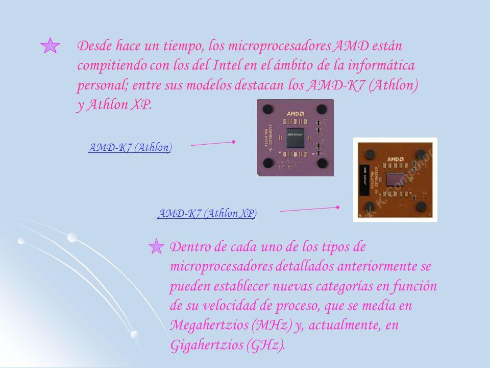 Desde hace un tiempo, los microprocesadores AMD están compitiendo con los del Intel en el ámbito de la informática personal; entre sus modelos destacan los AMD-K7 (Athlon) y Athlon XP.