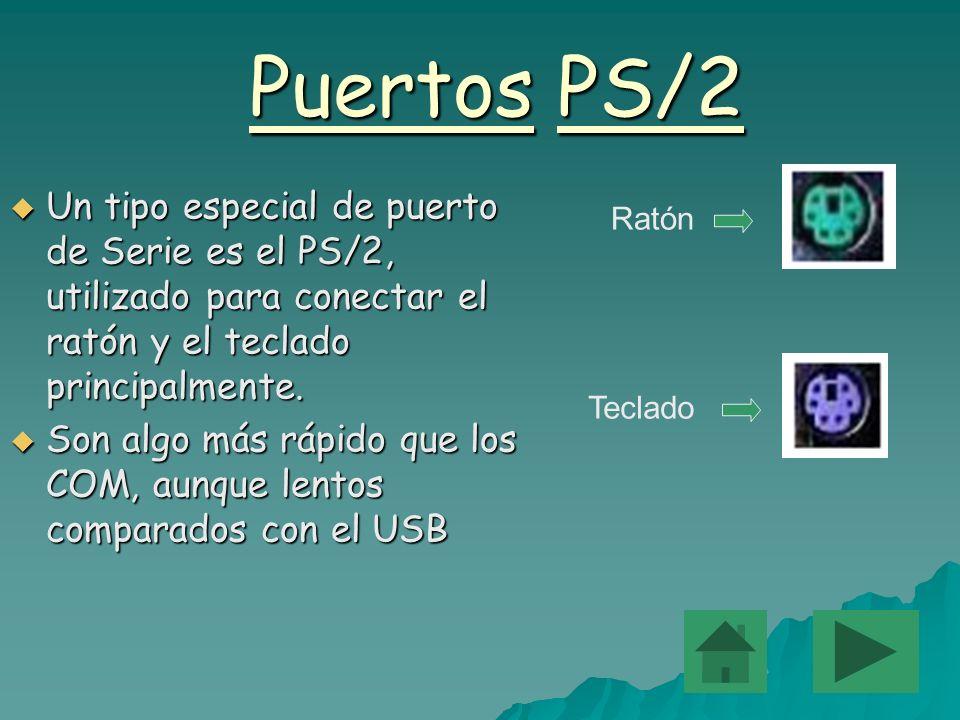 Puertos PS/2 Un tipo especial de puerto de Serie es el PS/2, utilizado para conectar el ratón y el teclado principalmente.