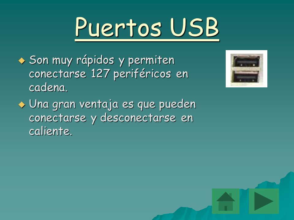 Puertos USBSon muy rápidos y permiten conectarse 127 periféricos en cadena.