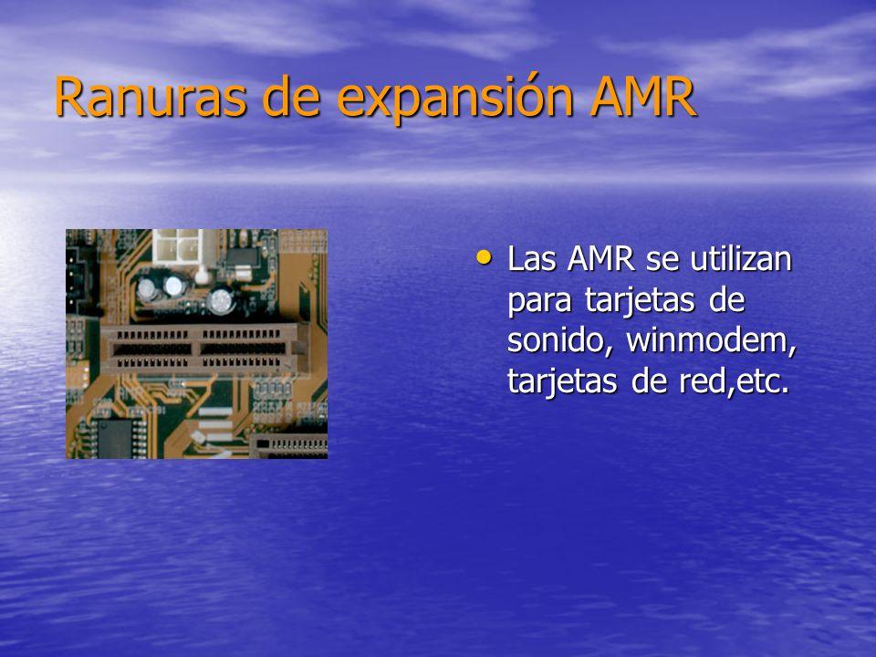 Ranuras de expansión AMR