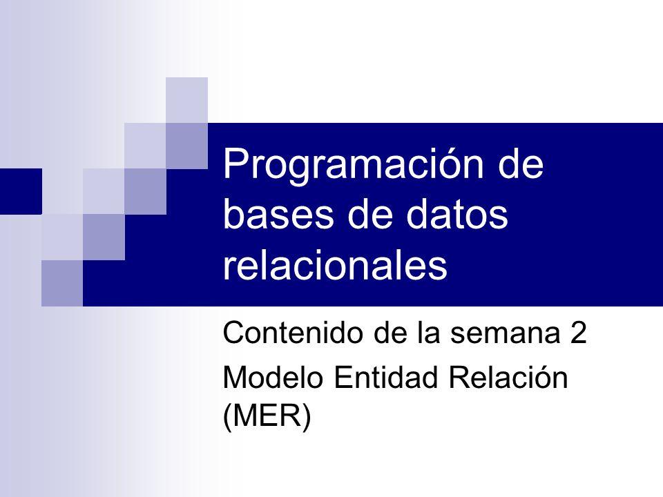 Programación de bases de datos relacionales