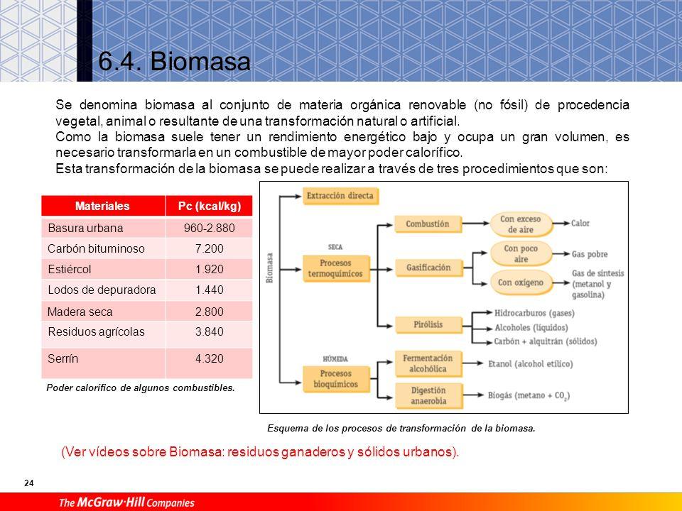 6.4. Biomasa
