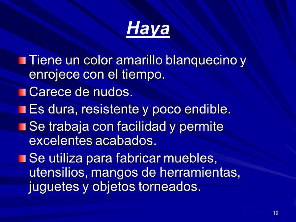 Haya Tiene un color amarillo blanquecino y enrojece con el tiempo.