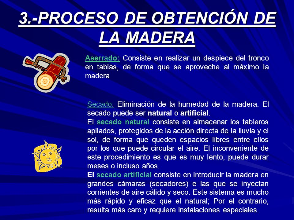 3.-PROCESO DE OBTENCIÓN DE LA MADERA