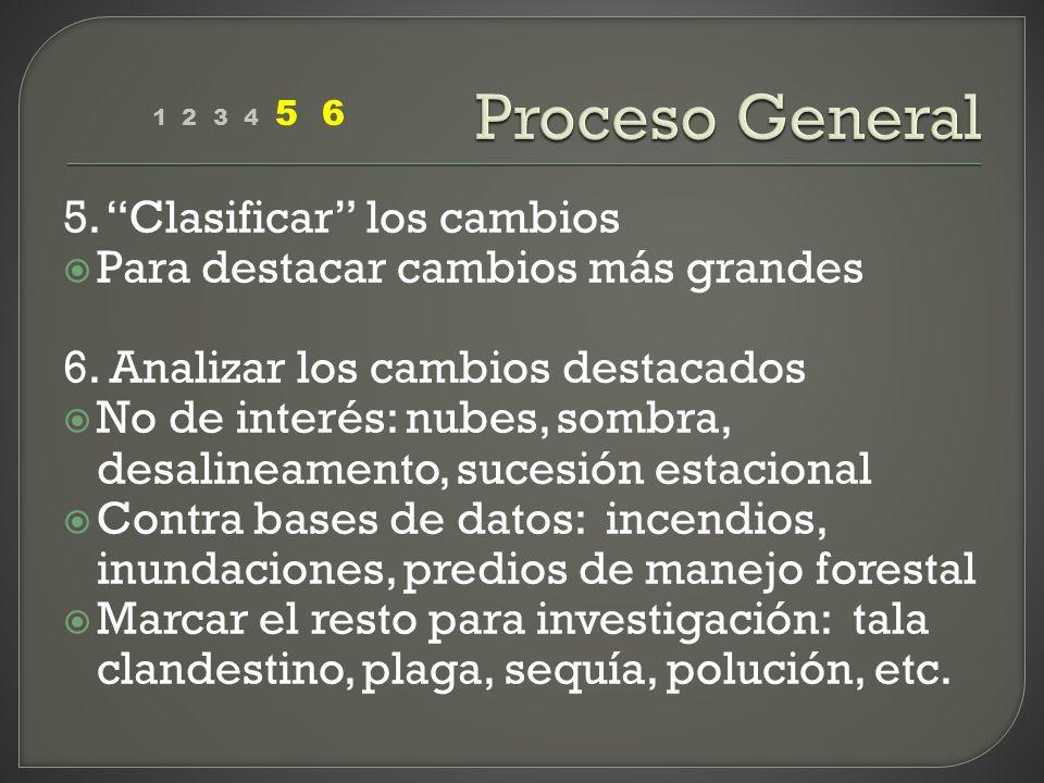 Proceso General 5. Clasificar los cambios