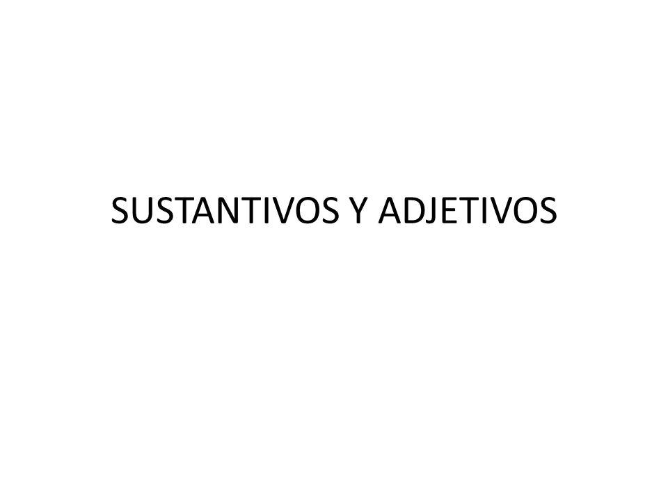 SUSTANTIVOS Y ADJETIVOS