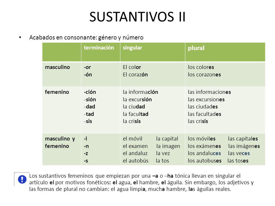 SUSTANTIVOS II plural Acabados en consonante: género y número