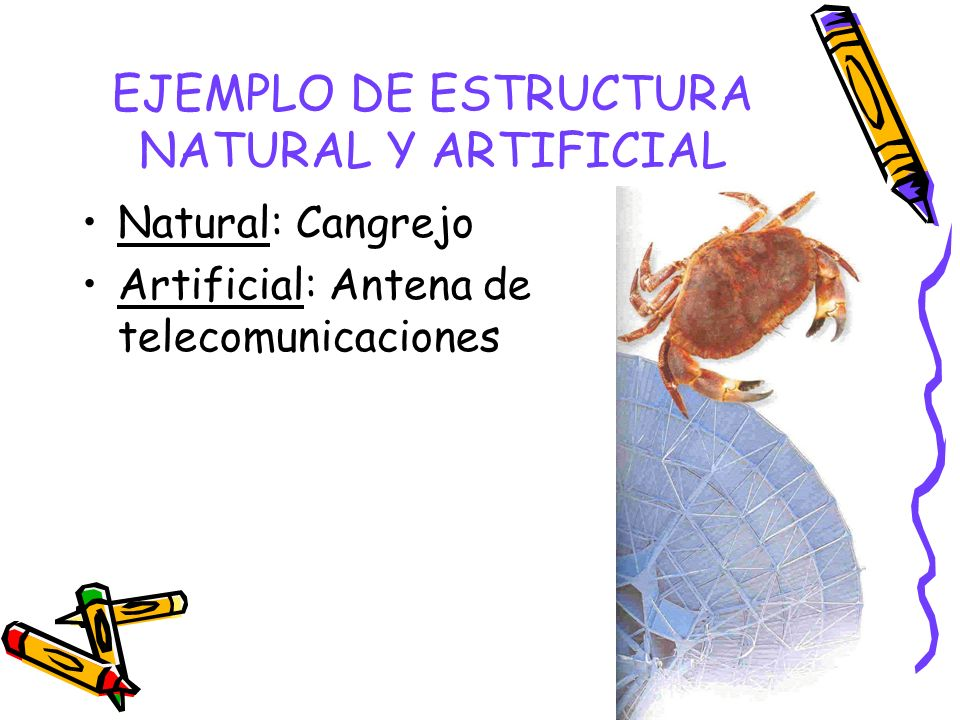 EJEMPLO DE ESTRUCTURA NATURAL Y ARTIFICIAL