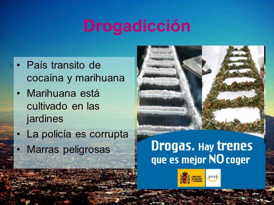 Drogadicción País transito de cocaína y marihuana