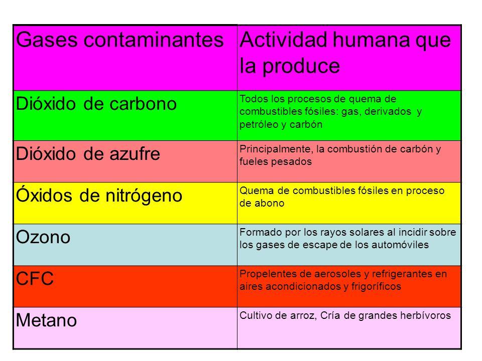 Actividad humana que la produce