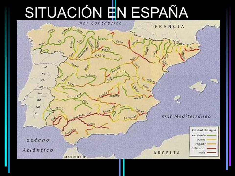 SITUACIÓN EN ESPAÑA