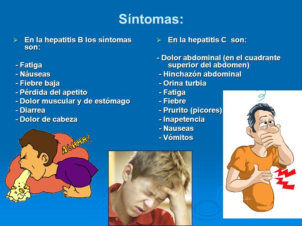 Síntomas: En la hepatitis B los síntomas son: - Fatiga - Náuseas