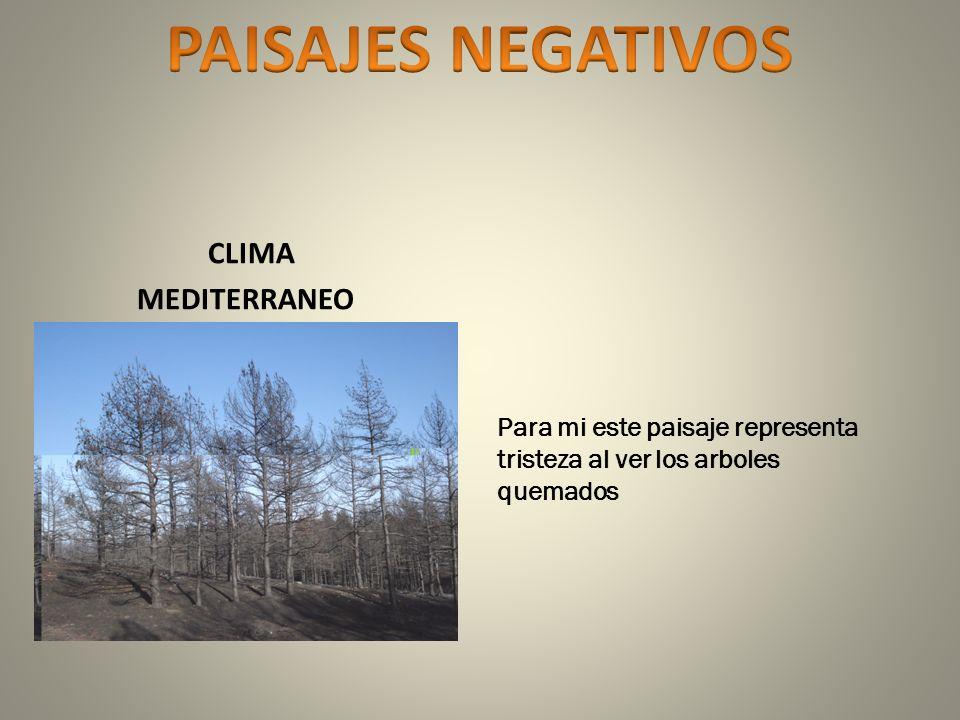 PAISAJES NEGATIVOS CLIMA MEDITERRANEO