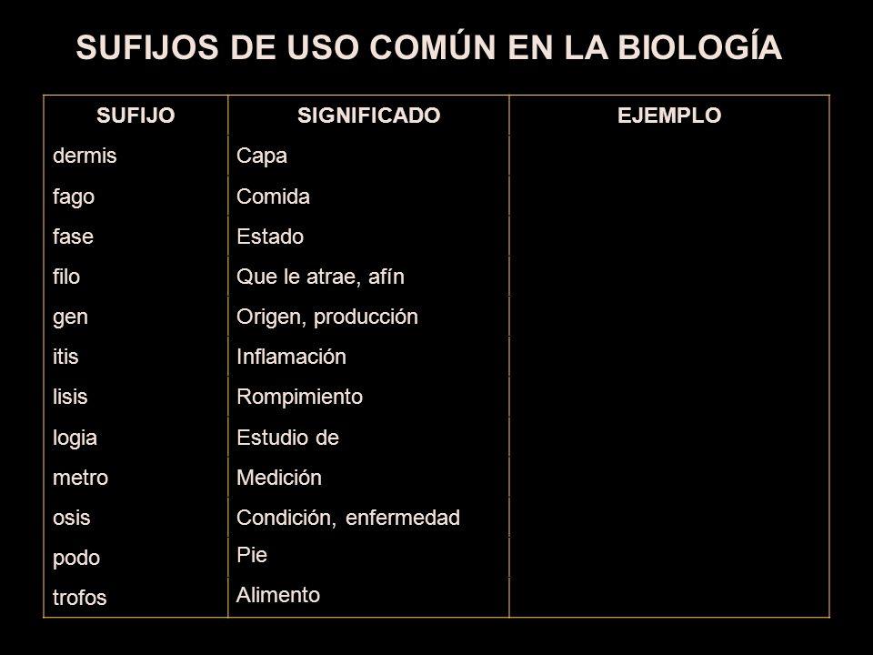 SUFIJOS DE USO COMÚN EN LA BIOLOGÍA
