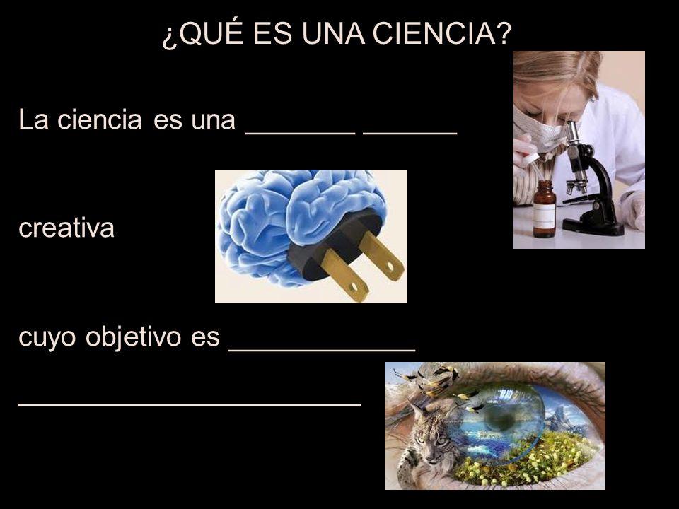 ¿QUÉ ES UNA CIENCIA La ciencia es una _______ ______ creativa