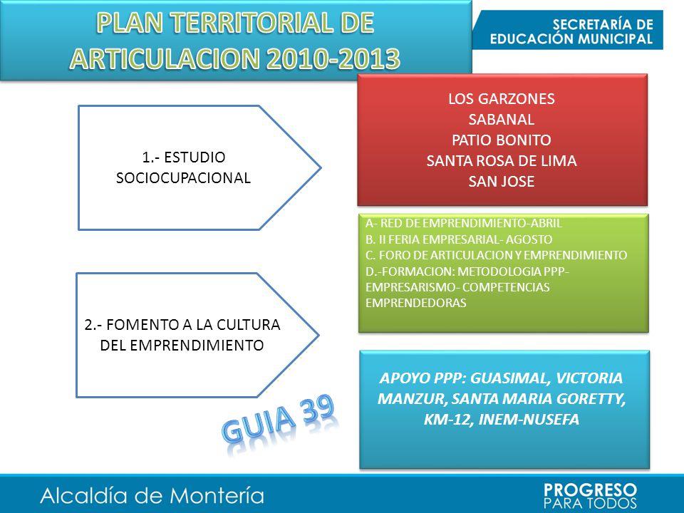 PLAN TERRITORIAL DE ARTICULACION 2010-2013