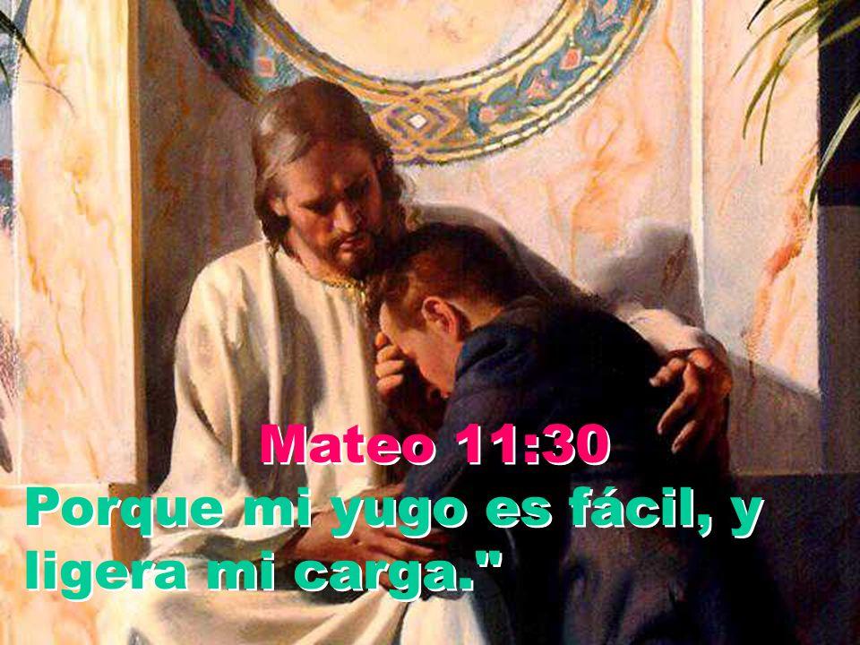 Mateo 11:30 Porque mi yugo es fácil, y ligera mi carga.
