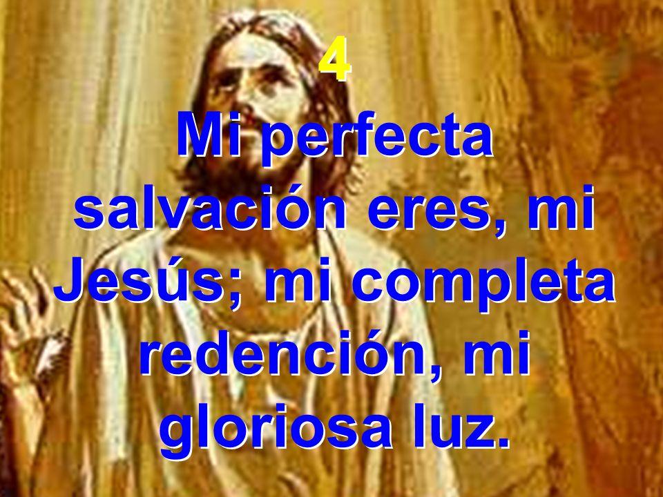 4 Mi perfecta salvación eres, mi Jesús; mi completa redención, mi gloriosa luz.