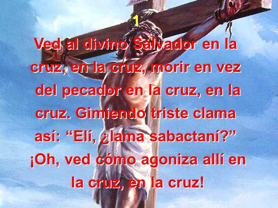 Ved al divino Salvador en la cruz, en la cruz, morir en vez