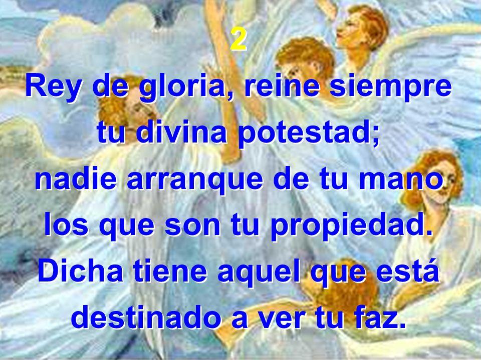 Rey de gloria, reine siempre tu divina potestad;