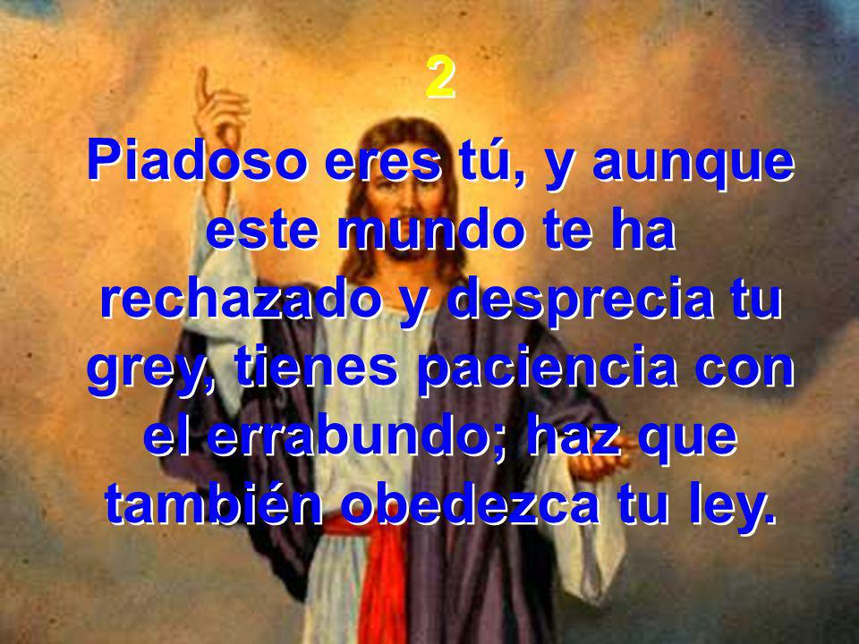 2 Piadoso eres tú, y aunque este mundo te ha rechazado y desprecia tu grey, tienes paciencia con el errabundo; haz que también obedezca tu ley.