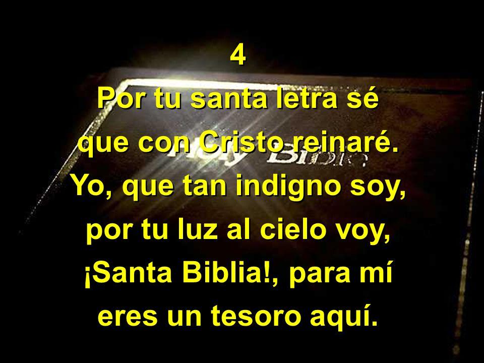 4Por tu santa letra sé. que con Cristo reinaré. Yo, que tan indigno soy, por tu luz al cielo voy, ¡Santa Biblia!, para mí.