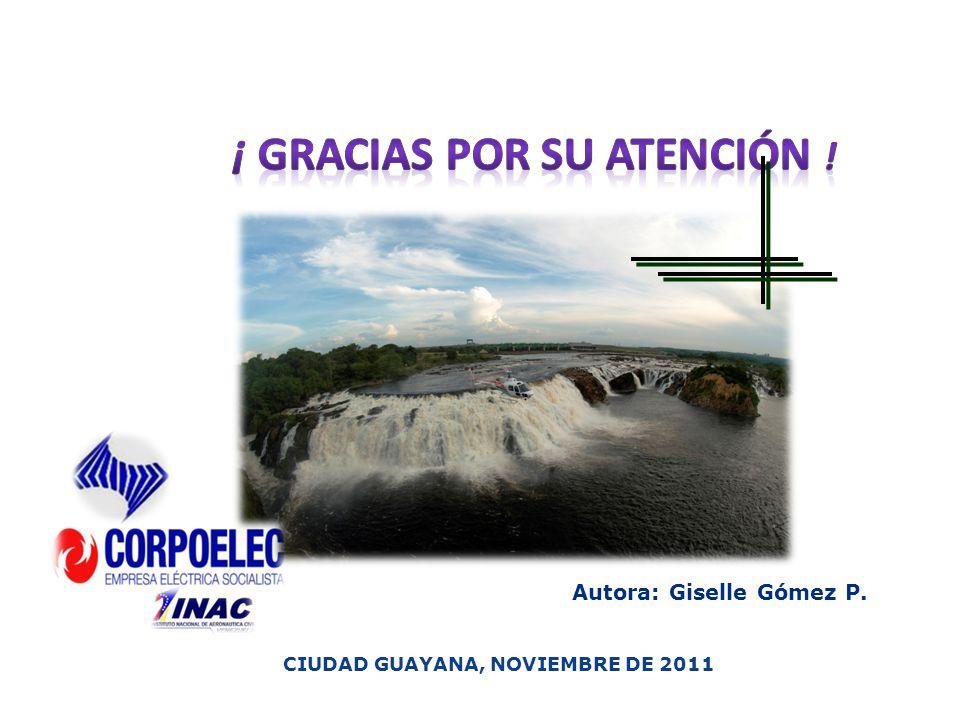 ¡ Gracias por su atención ! CIUDAD GUAYANA, NOVIEMBRE DE 2011