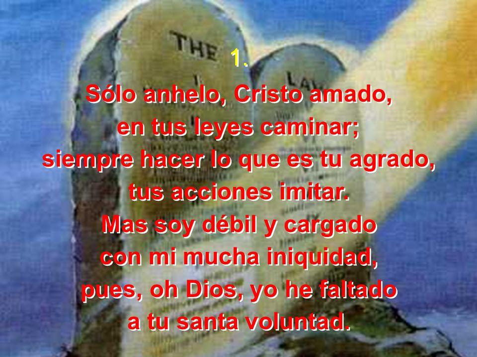Sólo anhelo, Cristo amado, en tus leyes caminar;