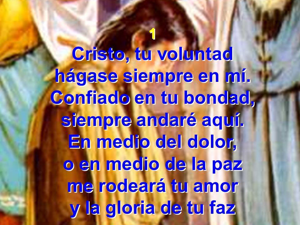 Cristo, tu voluntad hágase siempre en mí. Confiado en tu bondad,