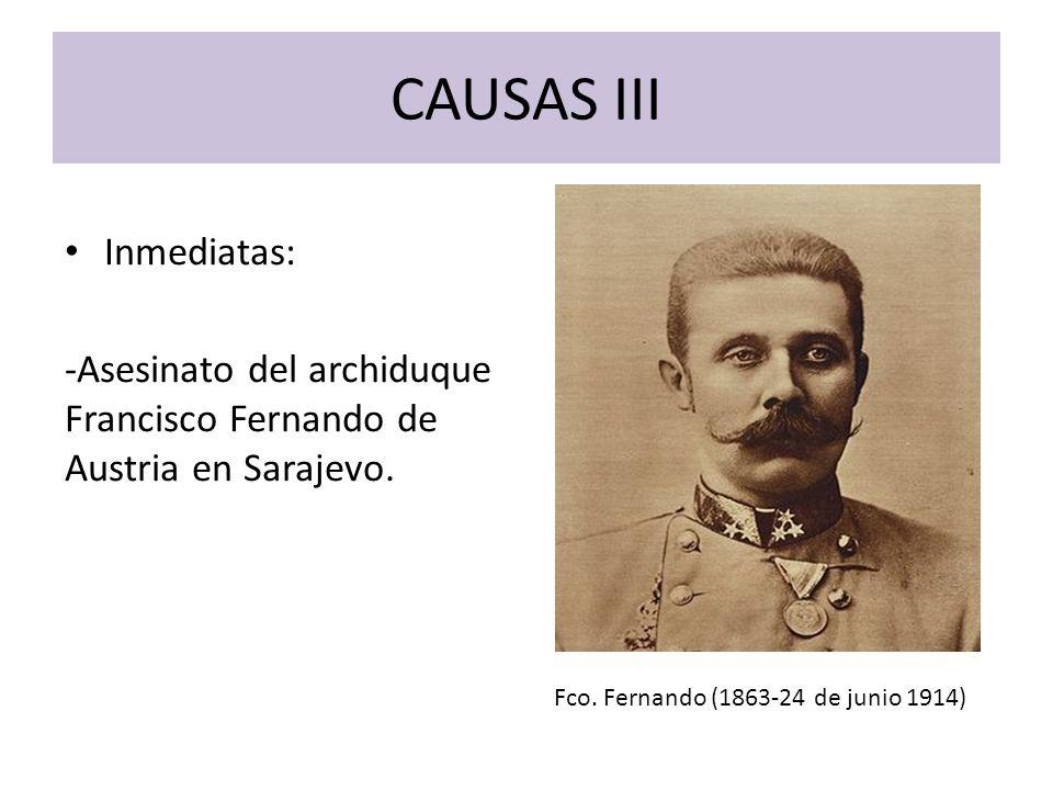 CAUSAS III Inmediatas: