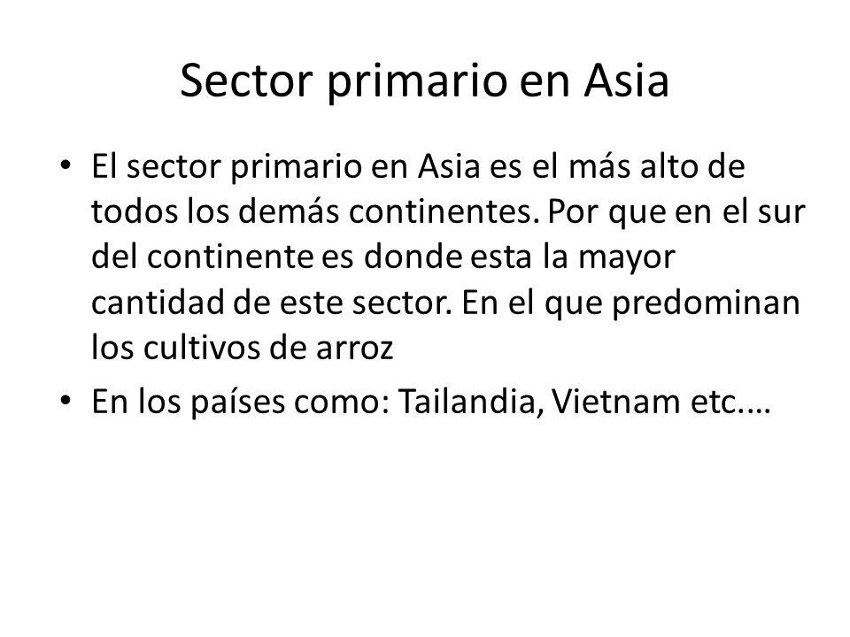 Sector primario en Asia
