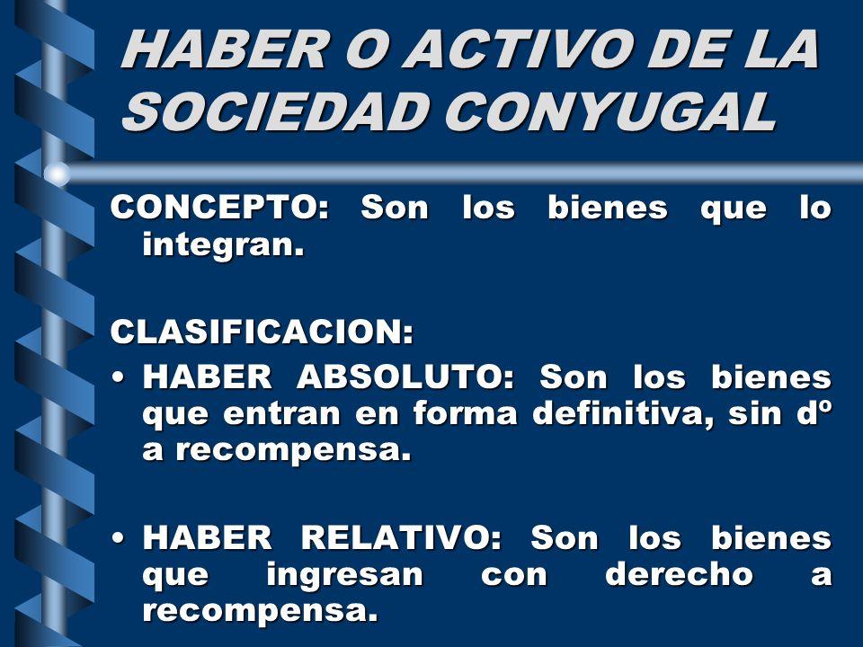 HABER O ACTIVO DE LA SOCIEDAD CONYUGAL