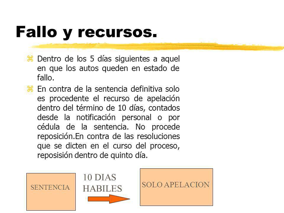 Fallo y recursos. 10 DIAS HABILES