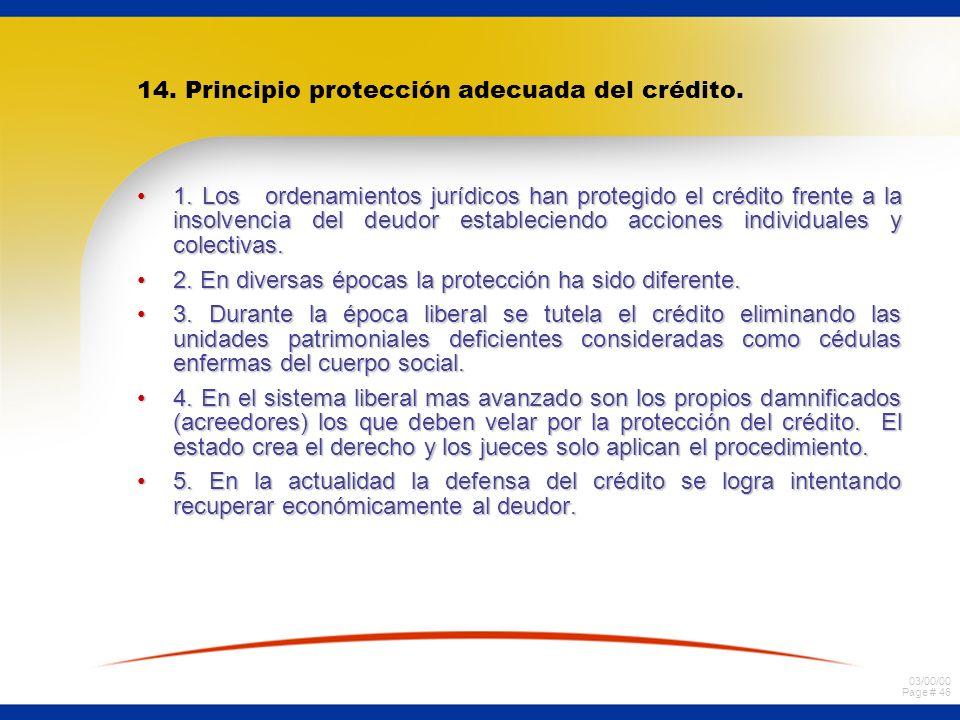 14. Principio protección adecuada del crédito.