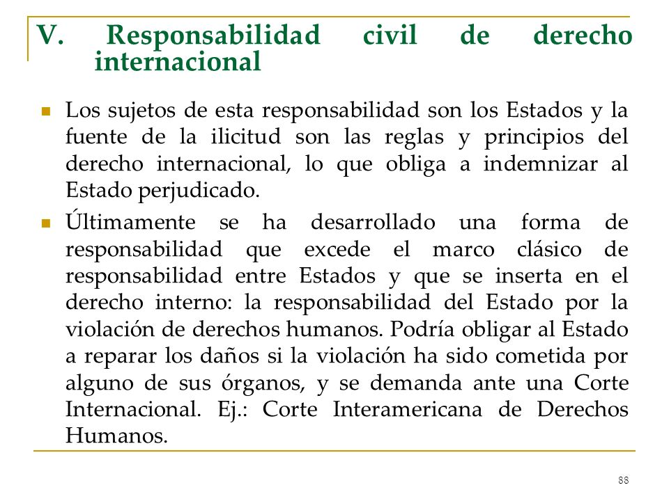 V. Responsabilidad civil de derecho internacional