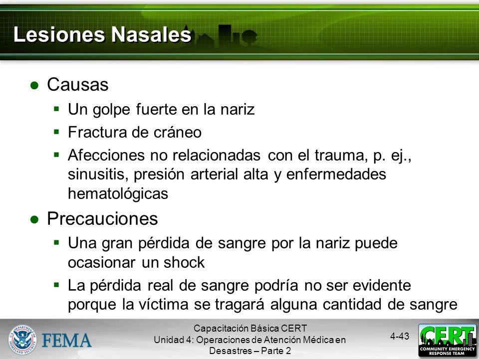 Lesiones Nasales Causas Precauciones Un golpe fuerte en la nariz