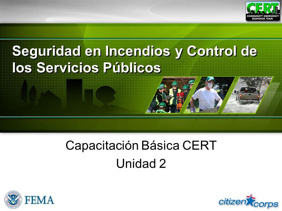 Seguridad en Incendios y Control de los Servicios Públicos
