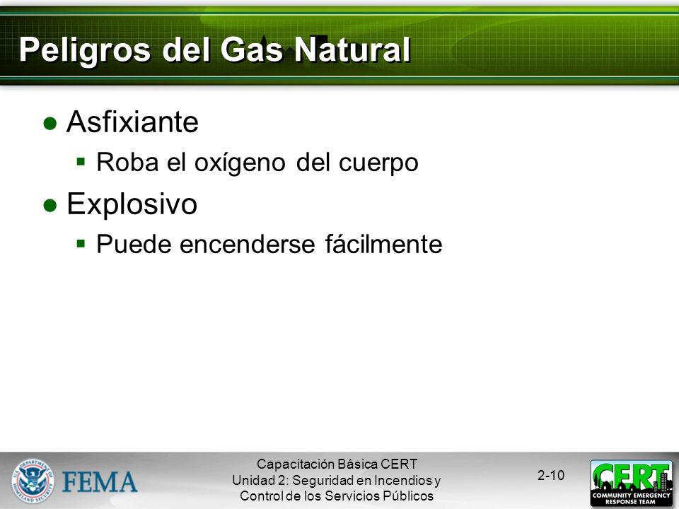 Peligros del Gas Natural