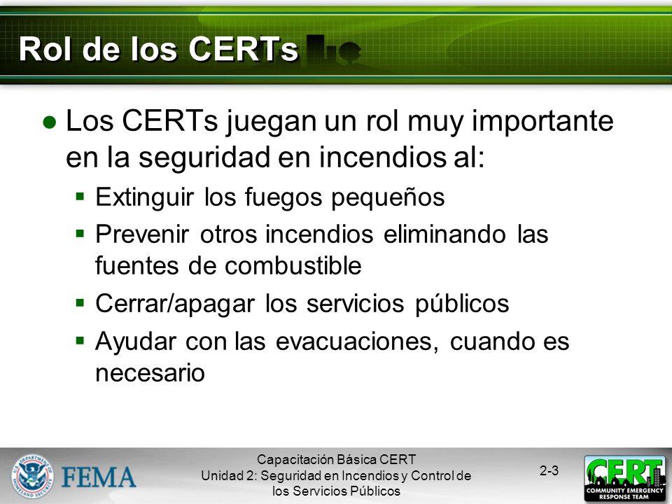 Rol de los CERTs Los CERTs juegan un rol muy importante en la seguridad en incendios al: Extinguir los fuegos pequeños.