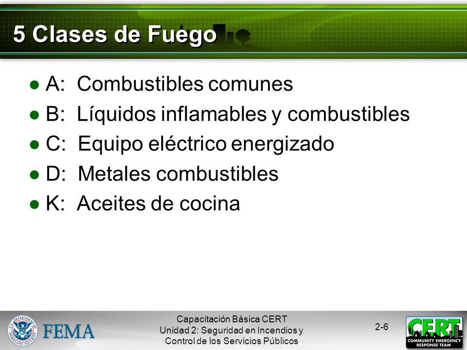 5 Clases de Fuego A: Combustibles comunes