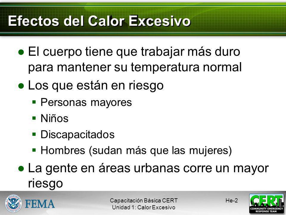 Efectos del Calor Excesivo