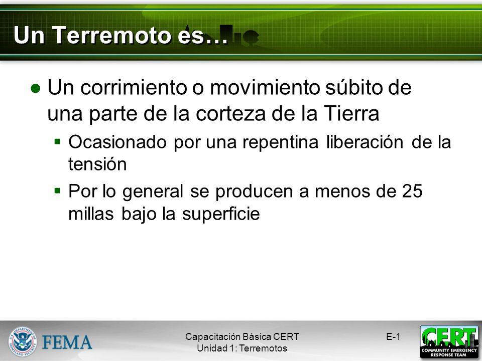 Capacitación Básica CERT