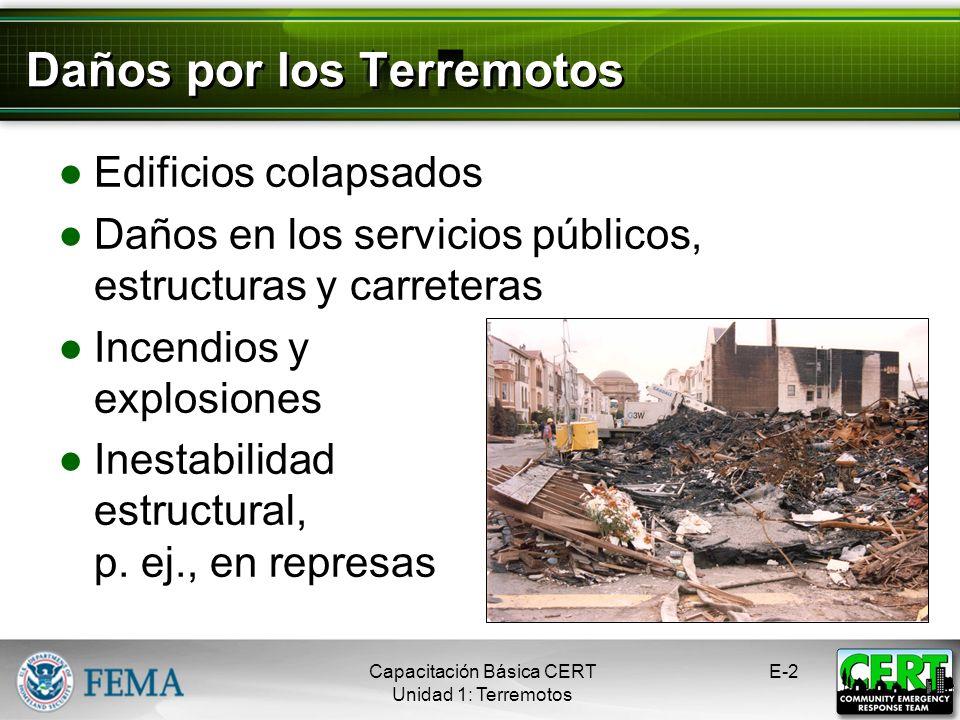 Daños por los Terremotos