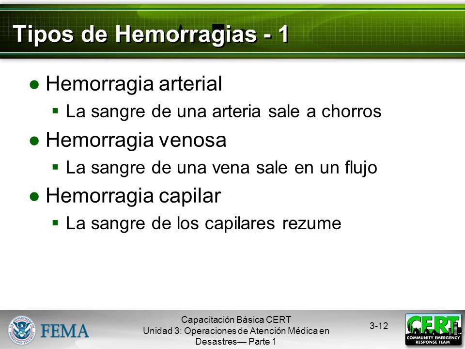 Tipos de Hemorragias - 1 Hemorragia arterial Hemorragia venosa